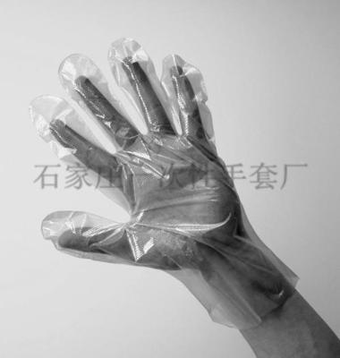 卫生手套图片/卫生手套样板图 (3)