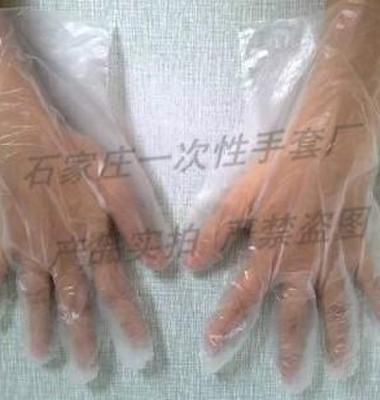 卫生手套图片/卫生手套样板图 (4)