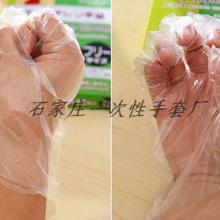 供应一次性手套价格一次性手套报价一次性手套多少钱