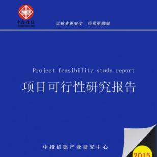 聚酯漆项目可行性研究报告图片