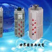 辽宁沈阳0到600V电动调压器图片