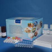 麻痹性贝类毒素酶联免疫试剂图片