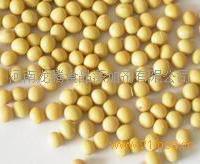 保健食品婴幼儿食品用大豆低聚肽