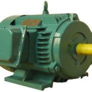 YD系列变极多速三相异步电动机图片