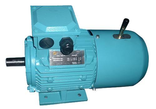 YEJ电磁制动三相异步电动机销售