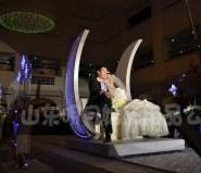 供应保定婚庆用品十大最另类的求婚