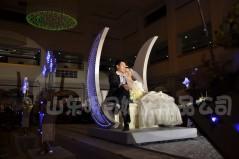 保定婚庆用品十大最另类的求婚图片