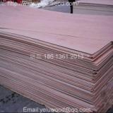 供应杨木板/包装板