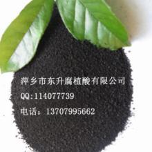 供应腐植酸原粉系列