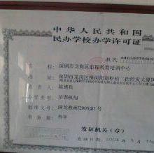 布吉2013年会计年审