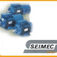 SEIMEC刹车马达图片