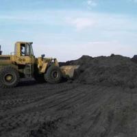 供应内蒙古准格尔旗电煤煤泥粉价格煤泥烘干厂家精煤粉