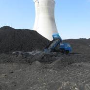 低价原煤电煤烘干煤泥粉精洗煤粉图片