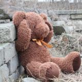 供应可爱熊