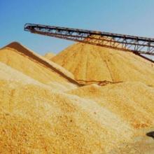 供应玉米,小麦等粮食