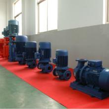 供应上海品牌管道泵/运行平稳/安装检修方便