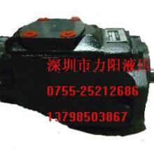 供应T6CC-025-006-1R00双联泵