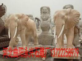 河北曲阳石雕大象图片