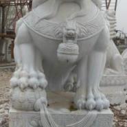 供应河北保定曲阳县石雕狮子、石雕全国首选、石雕价格表百分百优惠、