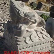 石雕金蟾图片