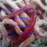 供应红虫供货商 红虫供货商 青岛鸿振达工贸有限公司