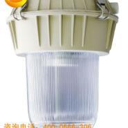 电厂专用灯PF03-1图片