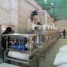 专业生产微波干燥设备