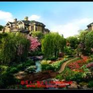 小区别墅景观园艺绿化建设图片