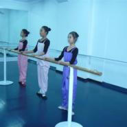 世纪耐德舞蹈专业地板舞蹈地胶地板图片