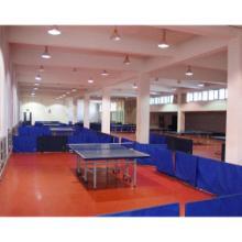 乒乓球场地板
