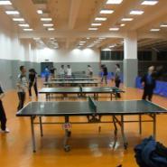 乒乓球场专用地板胶图片
