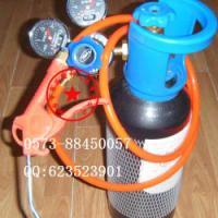 供应嘉兴氮气4升氮气瓶40升氮气钢瓶40升10升4升食品级氮气