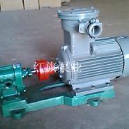 2CY系列齿轮油泵图片