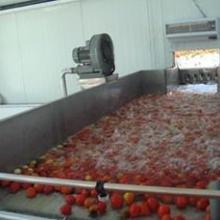 供应果蔬汁生产线饮料生产线
