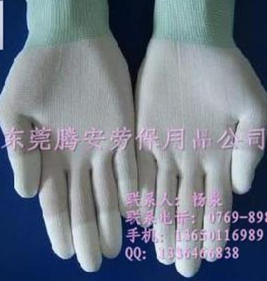 尼龙手套图片/尼龙手套样板图 (3)