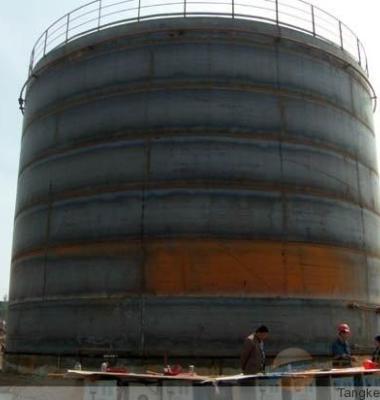 大型立式罐图片/大型立式罐样板图 (3)