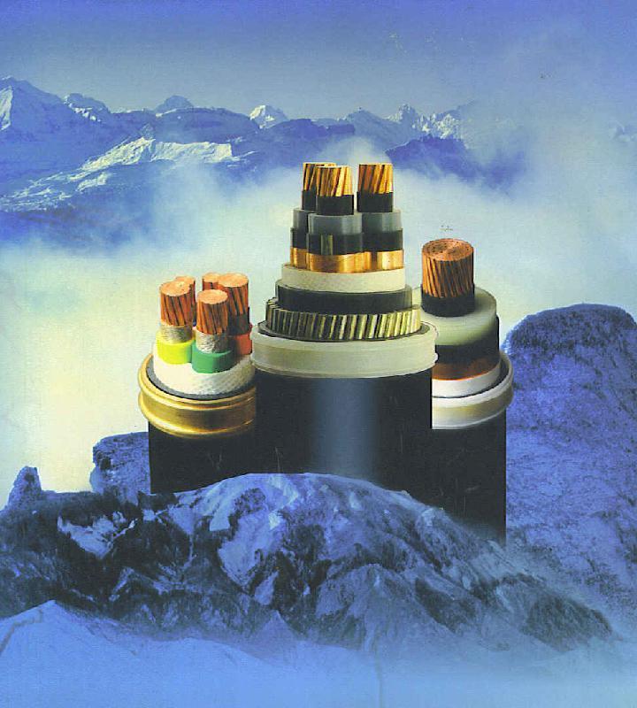 供应YJV32电线电力电缆电缆