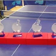 乒乓球比赛奖杯奖牌定做图片