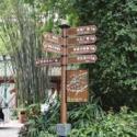 供应木质草地牌、动物草地牌、树木介绍牌、植物介绍牌