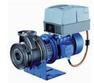 上海热水循环泵厂家直销图片