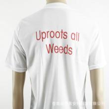 男式T恤批发 厂家供应 质量保证