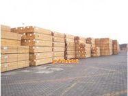 供应木材木2图片