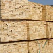 进口花梨木类有经验的木材清关商检图片