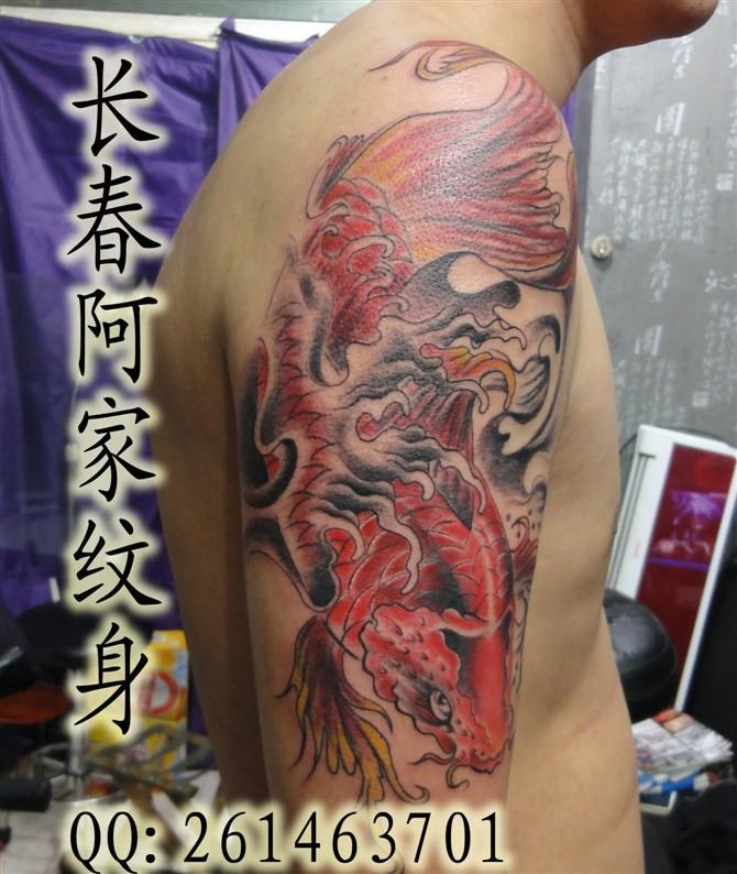 鱼纹身,招财纹身,招财鱼纹身 高清图片