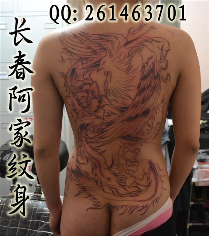 纹身_纹身供货商_供应满背凤凰纹身图片