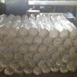 生产塑料透明软管图片