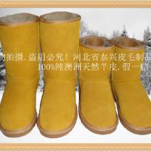 本廠長期訂做供應各種最新款澳洲皮毛一體優質羊皮時尚超保暖雪地靴圖片