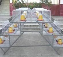 供应养殖笼具