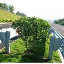 供应高速公路防撞护栏 高速公路防撞护栏三波