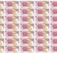 第13届南太平洋运动会纪念整版钞图片